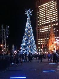 Solar Powered Christmas Tree Lights by Solar Powered Event Lighting