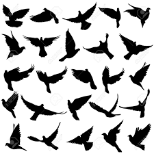 Free Silhouette Images Set Of Silhouettes Of Doves Royalty Free Cliparts Vectors And