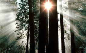 30 sunrays wallpapers backgrounds images design trends