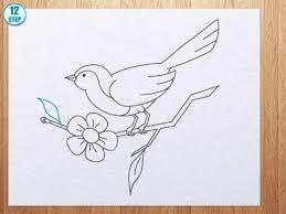 gallery drawings of a birds easy drawings art gallery