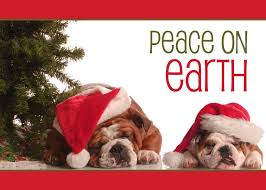 dog christmas cards personalized dog christmas cards cardsforcauses