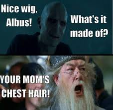 Harry Potter Meme - harry potter meme dump album on imgur