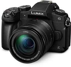 zebra pattern lumix panasonic lumix dmc g80 review specifications photography blog