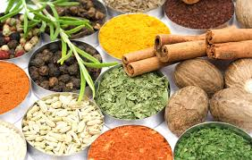 la cuisine indienne un de cuisine indienne india connections