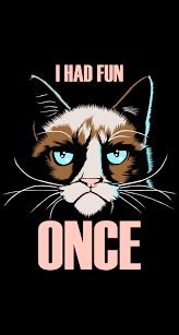 Grumpy Cat Meme I Had Fun Once - grumpy cat iphone wallpaper wallpapersafari