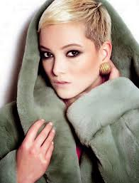 very short pixie hairstyle with saved sides pixie hairstyles and haircuts for 2017 how to choose the right