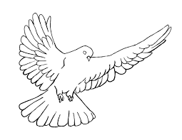 holy spirit dove pentecost coloring page crossmap christian kids