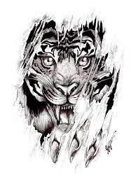 Tatoo Design - ripped skin angry tiger design by shellvia blackthorn