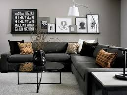 Living Room Decor Options Dazzling Home Living Room With Grey Wall Color And Round Shape