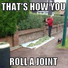 Roll Up Meme - now that s how you roll a joint imgur