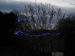 tree lights andysworld