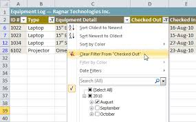 excel 2010 filtering data full page