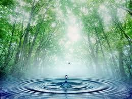 """""""Warung Jamu"""", Tantangan Dalam Manajemen Pengelolaan Air"""