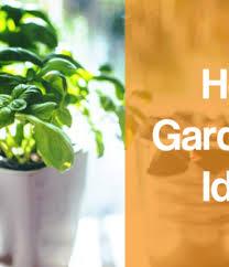 inside garden shop grow fresh herbs u0026 vegetables indoors