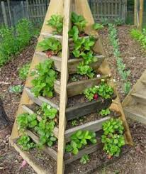 Strawberry Bed Planting Growing Box Made From Pallet Wood Garden