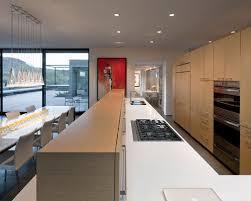 blum kitchen houzz