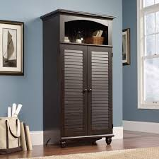 Computer Hutch Desk With Doors Cabinets Entrancing Crystal Office Armoire With Elegant