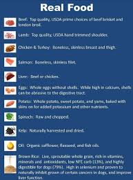 top 10 healthiest homemade dog food recipes