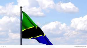 Tanzanian Flag Animated Flag Of Tanzania Tansania Stock Animation 1926371