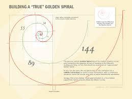 what is the differnece between a spiral and regular perm a true golden spiral