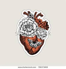 tattoo anatomy vintage illustration floral anatomical stock vector