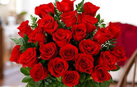 how much does a dozen roses cost how many roses to give on s day proflowers
