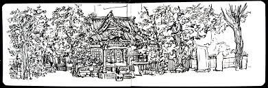 sakura koi watercolour field sketch set