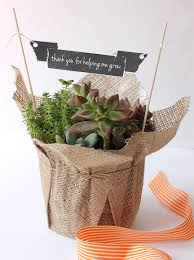 made with love by you gardening gift ideas succulent birdcage
