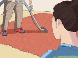 Best Way To Clean Shaggy Rugs How To Clean Shag Carpet 12 Steps With Pictures Wikihow