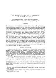 microbiology society journals the behaviour of t mycoplasmas in