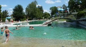 Natural Swimming Pool All Natural Understanding Natural Swimming Pools