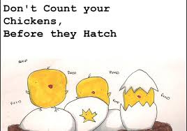 Never Count Your Chicken Before They Hatch Modern Proverbs Don T Count Your Chickens Before They Are Hatched