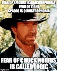 Afraid Of Spiders Meme - chuck norris meme imgflip