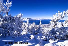 dirk yuricich photography u s a lake tahoe winter frosted trees