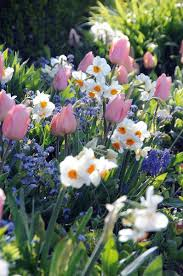 1419 best flower garden pictures images on pinterest beautiful