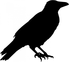 free silhouette images crow vector silhouette free stock photo public domain pictures