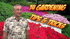 Garden Tips And Ideas 14 Gardening Tips Tricks Ideas