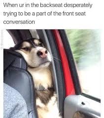 Pinterest Funny Memes - funny memes sitting in the back meme collection pinterest