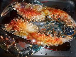 cuisine homard recette de homard grillé au four sauce a l aneth