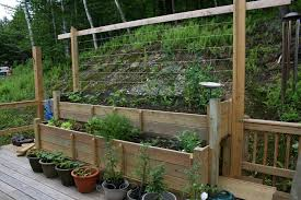 amazing of raised garden containers deck vegetable garden ideas