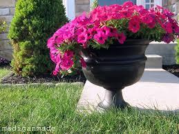 gardening tips tips on gardening in early winter