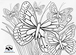 butterfly coloring page with lots of butterflies by ray horner jr