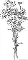 daisy coloring page creativemove me