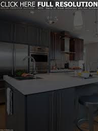 Mid Century Modern Kitchen Cabinets by Mid Century Modern Kitchen Cabinet Handles Tehranway Decoration