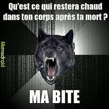 Hardcore Memes - the best wolf memes memedroid