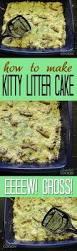 kitty litter cake recipe gross halloween party food