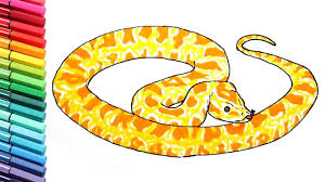 snake coloring pages for kids drawing and learning colors with