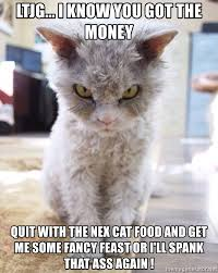Fancy Feast Meme - ltjg i know you got the money quit with the nex cat food and