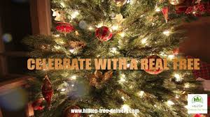 hilltop christmas tree farms on vimeo