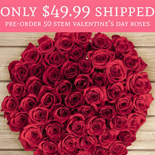 s day roses only 49 99 shipped pre order 50 stem s day roses